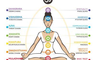 I 7 chakra: quali sono, le caratteristiche, le schede e gli esercizi per equilibrarli